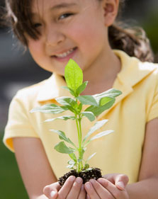 little girl holding a plant
