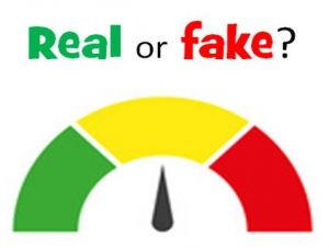 real-or-fake